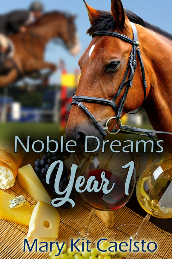 Book Cover: Noble Dreams Year 1 (Books 1-5)