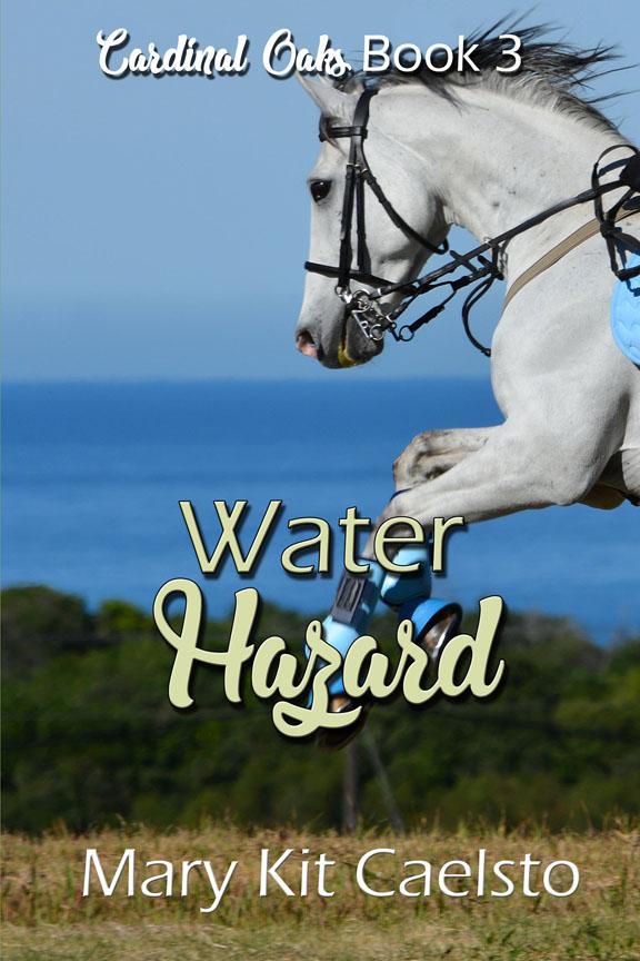 Book Cover: Water Hazard